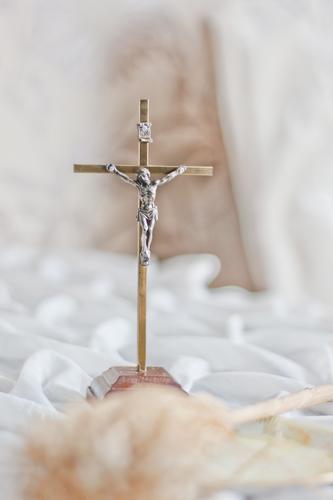 Fascinados por Jesús para fascinar a otros de su amor